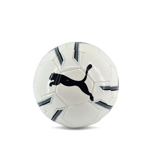 PELOTA-FUTBOL-PUMA-PRO-TRAINING-2-MS-BALL-BLANCO-GRIS